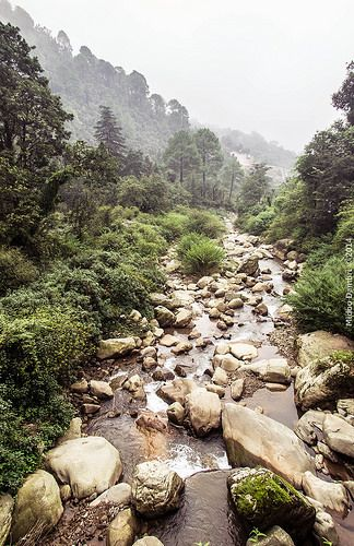 Water way to the river - Dharamshala By Midou Dambri