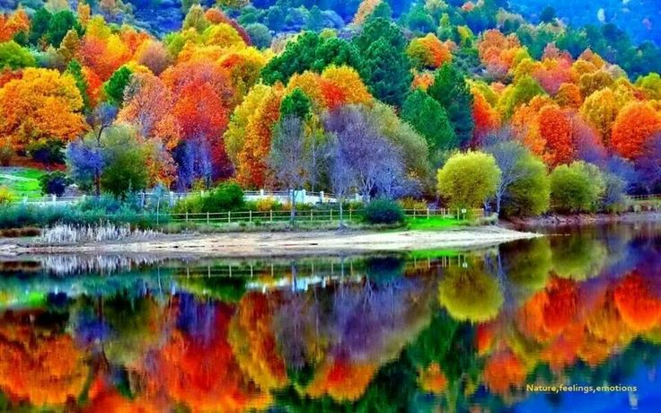 awesome bright autumn scenery - photo #36