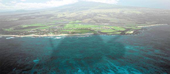 Hilo Hawaii (big island)!!