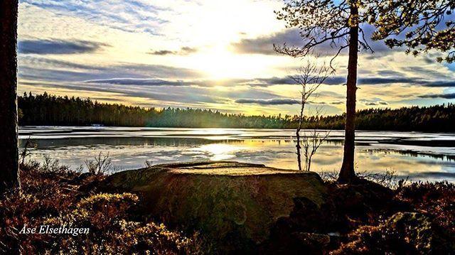 #finnskogen #instagram #followme #best2days #ulbolig #visitnorway #norway2day #amazing #country #glåmdalen #sunset #nrkøstnytt #innlandet #vghelg #norgesferie #east2norway #inatur #friluftsliv #villmarksliv #dreamnorway #icefishing #hunting #fiske #jakt #storm #tv2været #yrbilder #solnedgang #2vær