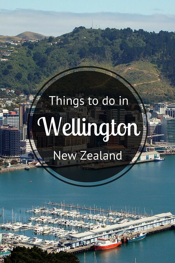 Got Wellington, New Zealand on your bucket list? Check out these insider tips on things to do and where to eat, drink, sleep, and explore.