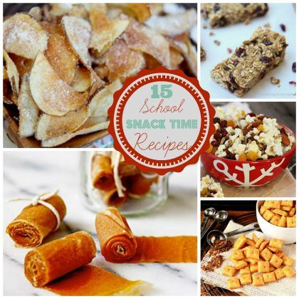 School Snack Time: 15 Packable Homemade Snack Recipes
