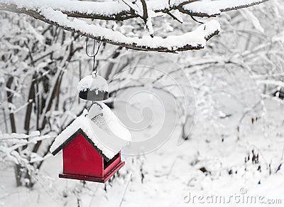 Casa vermelha do pássaro coberta com a neve