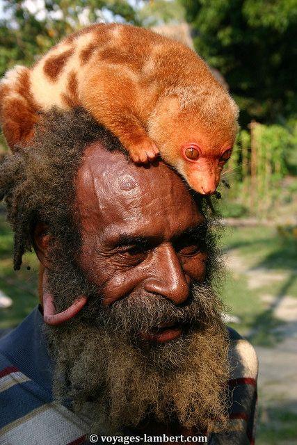 Goroka Festival . Papua New Guinea