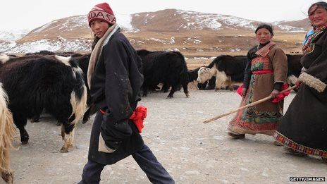 A gene that allows present-day Tibetans to cope with life at high altitude (13,000 ft.) was inherited from the extinct species of humans—the Denisovans. ... And a study of Eurasian populations showed that Neanderthal DNA is over-represented in parts of the genome involved in making skin, hair and nails—hinting, perhaps, at something advantageous that allowed Homo sapiens to adapt to conditions in Eurasia.