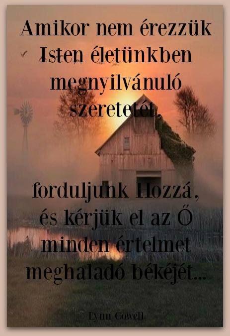 11225746_709560159180200_5880788021376998400_n.jpg (463×675)