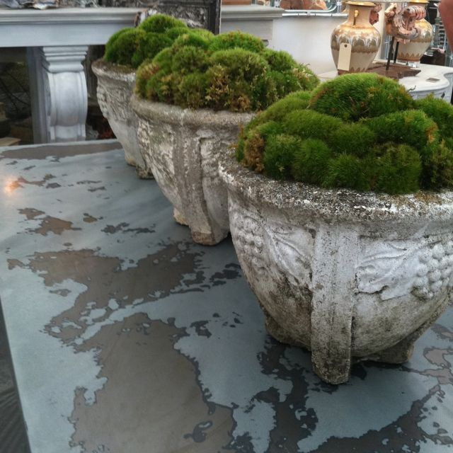 big planters with moss garden landscape
