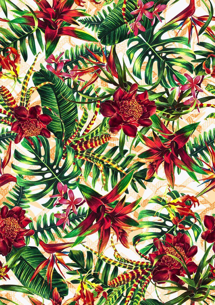 pattern, flower,