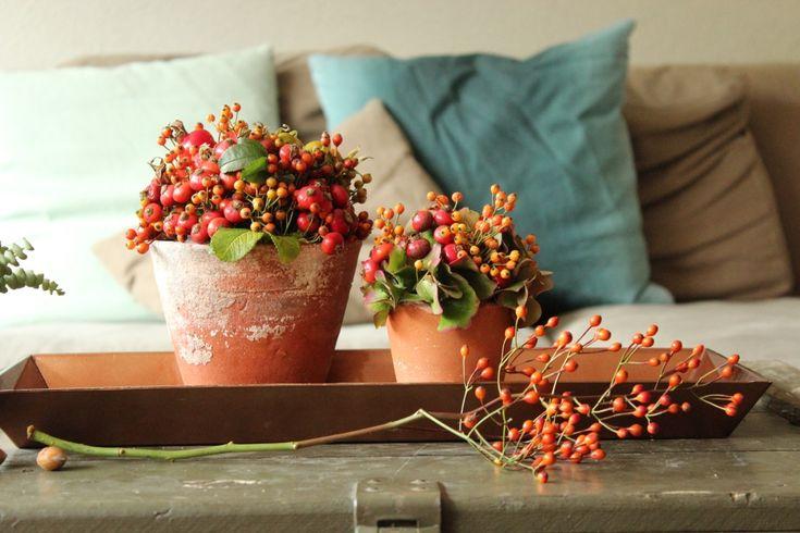 Een klein stukje van mij...: creatief met bloemen en planten