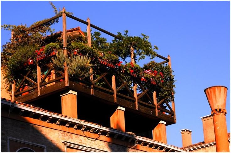 altana in Venice