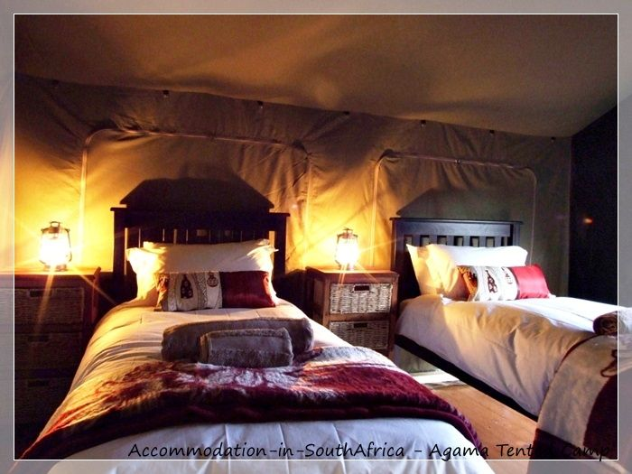Beautiful accommodation at Agama Tented Camp. Namaqualand accommodation. Agama Tented Camp Namaqualand. Accommodation in Namaqualand.