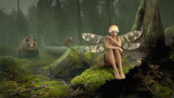 Fairy Tales, Fantasy, Forest, Elf