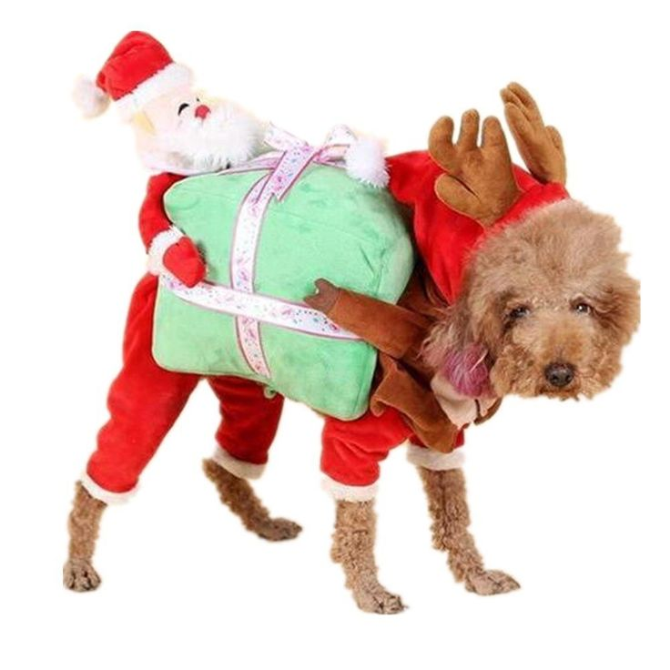 Harukokoro(TM)Pet Christmas Costumes, Winter Hoodie Coat Clothes for Dog, Dog Suit with Cap, Santa Claus Suit for Dog Hoodies Cat Xmas Costumes *** Want to know more, click on the image. (This is an affiliate link and I receive a commission for the sales) #CatCare