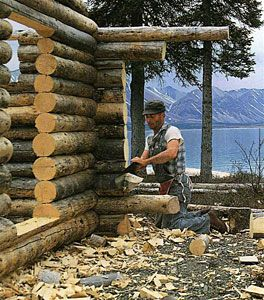 The amazing Dick Proenneke trimming the cabin wall logs.    _Alone in the Wilderness_ is one of our all-time favorite documentaries.