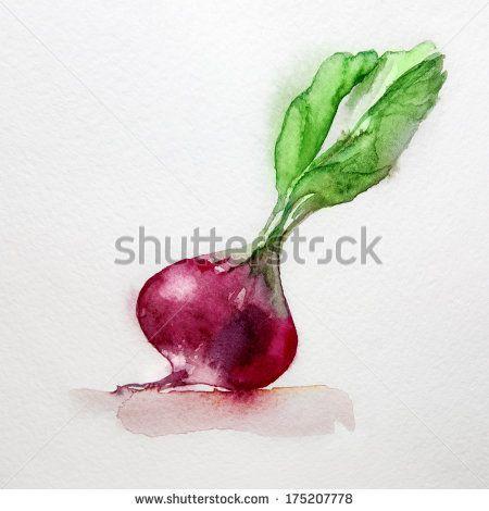 vegetable watercolors