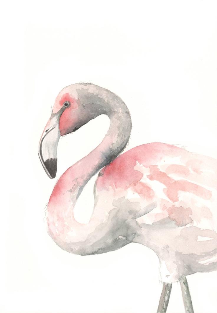 Flamingo ARTWatercolor Painting, Inspiration, Flamingos Watercolors, Painting F075, Watercolors Painting Of Birds, Flamingos Painting, Painting Birds, Pink Flamingos Art, Illustration Art