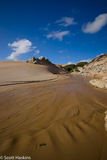Arthur Pieman Protected area, Tarkine Wilderness, Tasmania