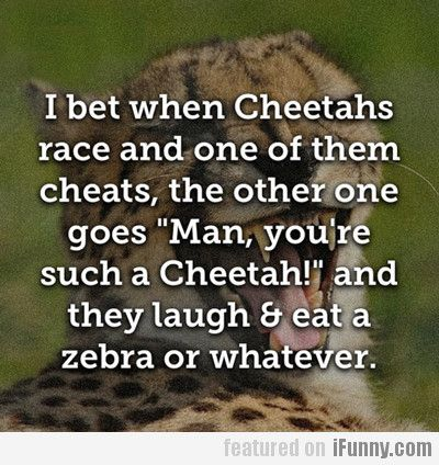 I Bet When Cheetahs Race And One Of Them Cheats...