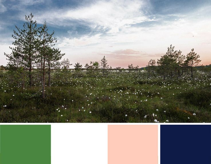 sage blush navy and white colour palette