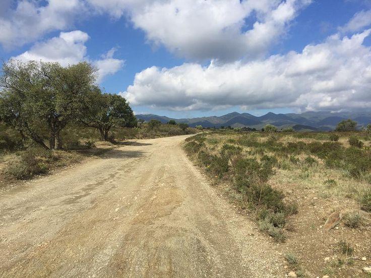 Brève #gravelbike #gravelroad #caminadebikes #catalunya  No filter Catalunya gravel road straight to Pyrénées a bit of Paradise ;) #gravelbike #gravelroad #caminadebikes #catalunya http://ift.tt/2dTesZi  Brève #gravelbike #gravelroad #caminadebikes #catalunya  contact@caminade.eu (Caminade) : October 15 2016 at 10:26PM http://ift.tt/2dTcdoR