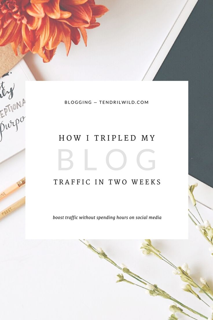 Do you currently use Pinterest for your blog? Read the full post and learn how I increase my audience and triple blog traffic using Tailwind!