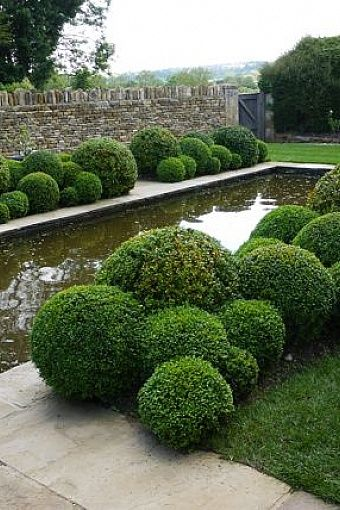 boxwood balls and reflecting pool