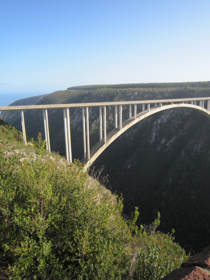 South Africa Bungee Bridge on the Garden Route