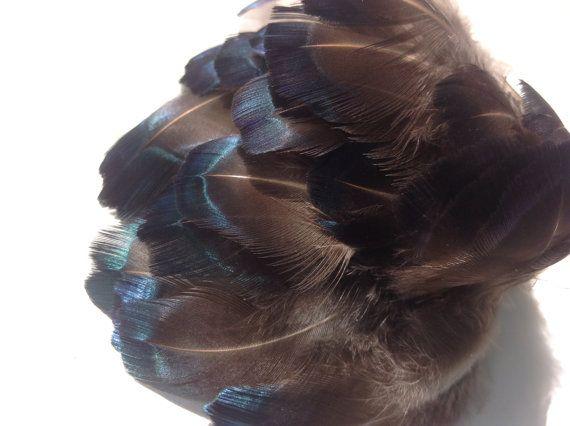 17 beste idee n over fazant veren op pinterest veren krans veren en veer ambachten - Blauwe turquoise decoratie ...