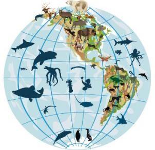 Distribuição de espécies