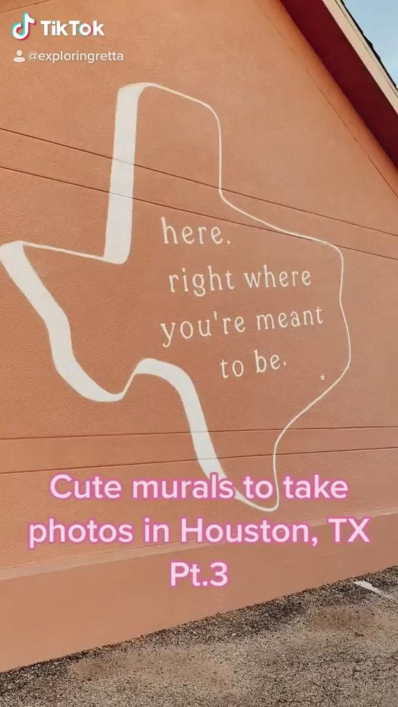 Instagrammable Murals In Houston Tx Video Travel Fun Travel Facts Fun Places To Go