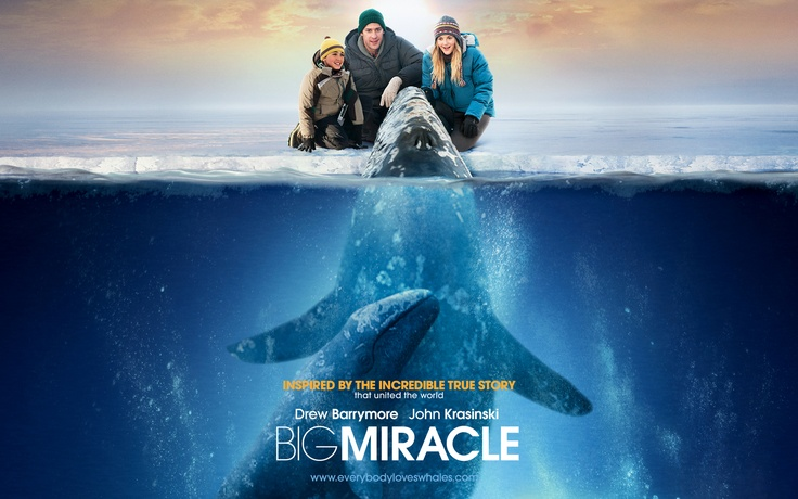 Big Miracle with Drew Barrymore and John Krasinski