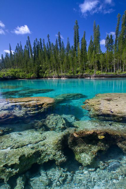 Coral rocks and crystal water, Isle of pine, New Caledonia, off the coast of Australia.