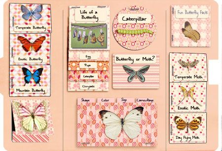 Butterfly Scrap Lapbook kIt #homeschool #lapbook #teacher