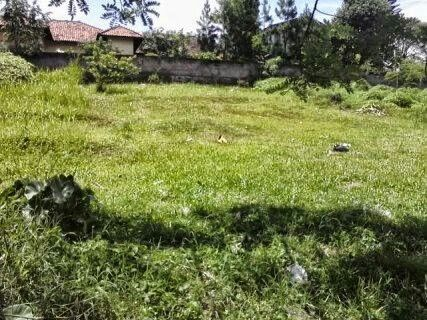 land indusrial or property do you need Pls whatsap me 083871819463