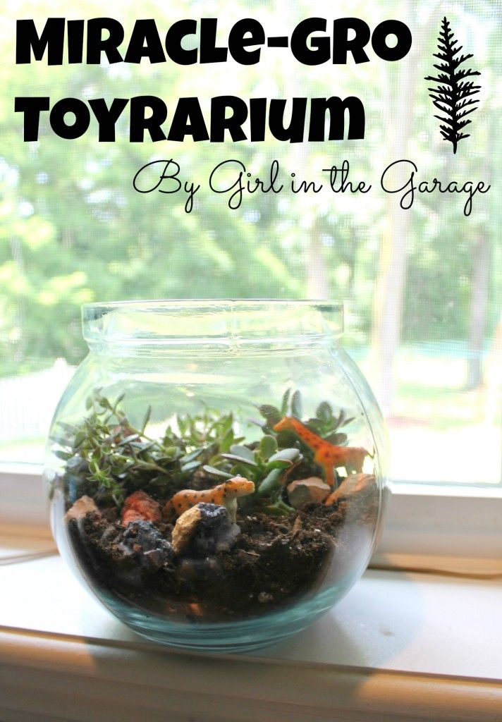 Create your own easy and fun toy terrarium with help from Miracle-Gro Moisture Control Potting Mix.  girlinthegarage.net