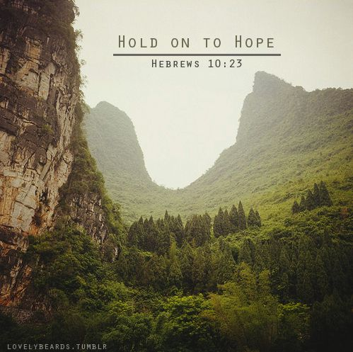 .: Hold On, God, Inspiration, Quotes, Faith, Truth, Scripture, Hebrews 10 23, Hope