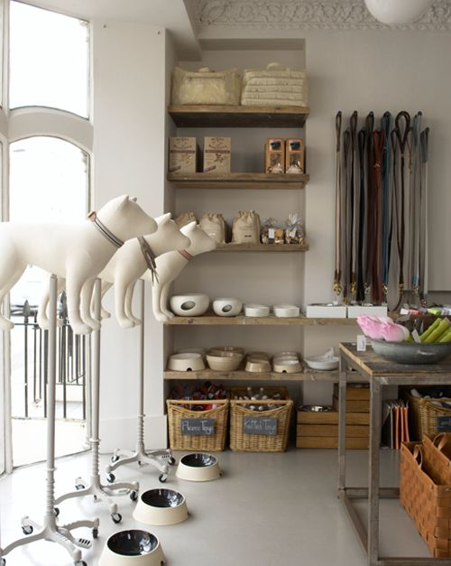 dog mannequin | ... Maud 's adorable London shoppe! Those doggie mannequins are so cute