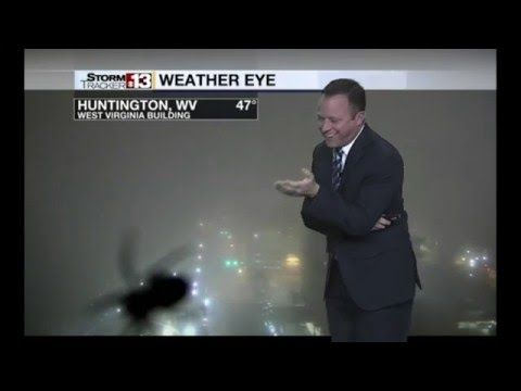 US weatherman screams after spotting giant spider