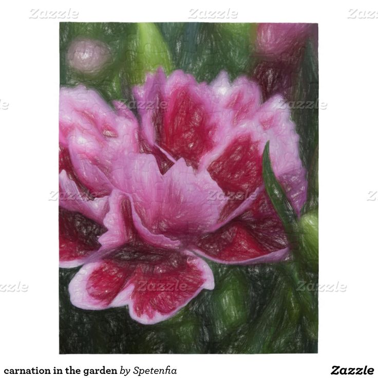 carnation in the garden jigsaw puzzles