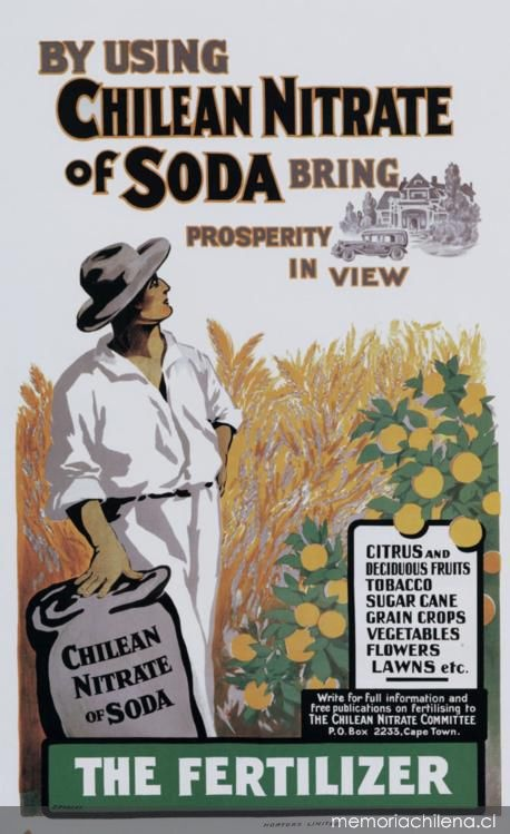 Chilean nitrate in South Africa 1912