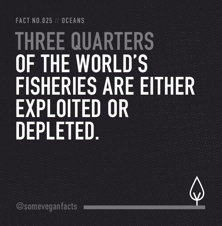 Some Vegan Facts - Fact 025. Source...