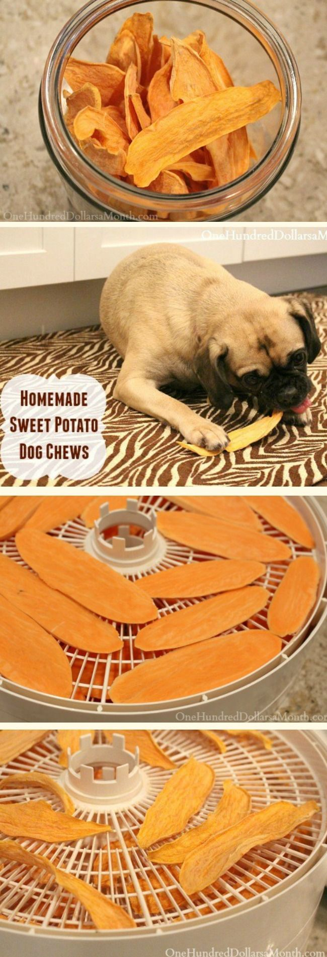 I was at the pet store the other day and noticed Sweet Potato Dog Chews for $7.99 a bag and thought … huh? I could totally do that! It looked just like dehydrated sweet potatoes, and I can dehydrate things in my sleep. So I made some and Lucy devoured the