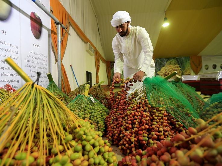 Abdullah Al Mazrouei inspects dates ahead of judging on the opening day of the Liwa Date Festival. Ravindranath K / The National