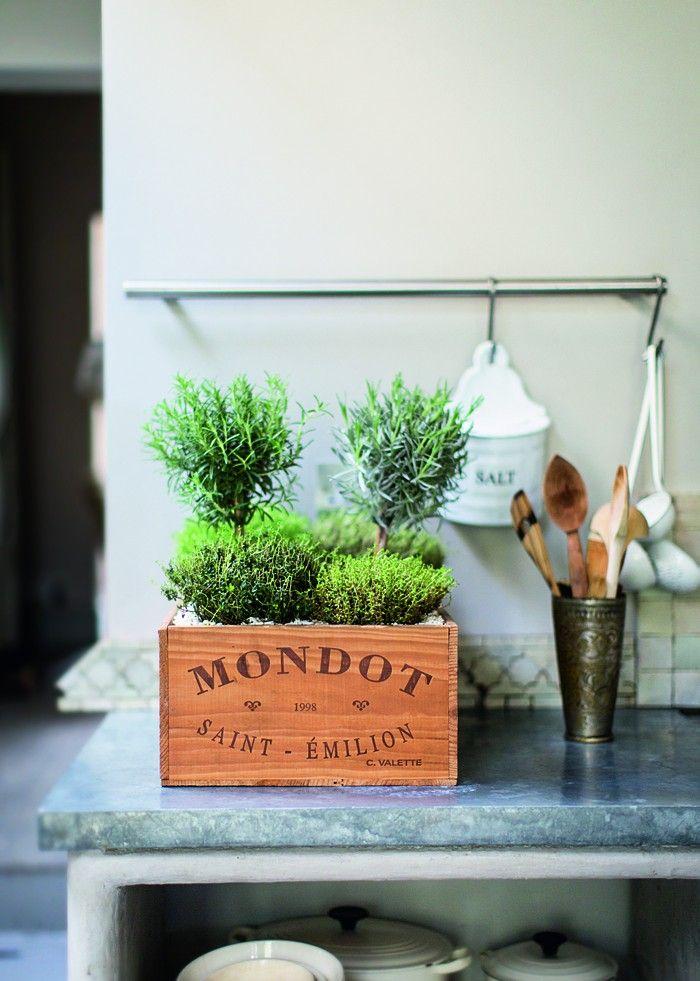 miniature French herb garden in a vintage wine crate with rosemary, thyme, and lavender