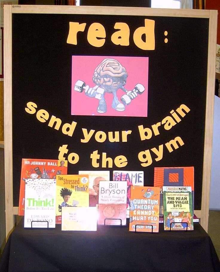 13 Best Images About Brain Display On Pinterest Your