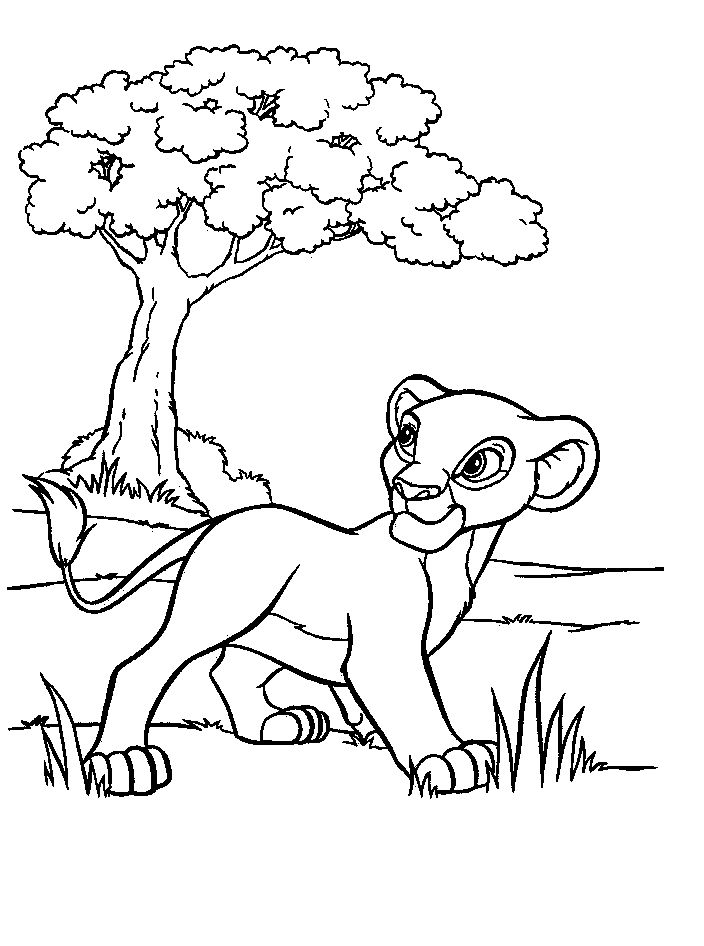 8 best Lions images on Pinterest Disney coloring pages Drawings