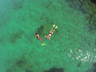 Snorkeling @ Yulia's Inn (Credits to : @a9un9hari)