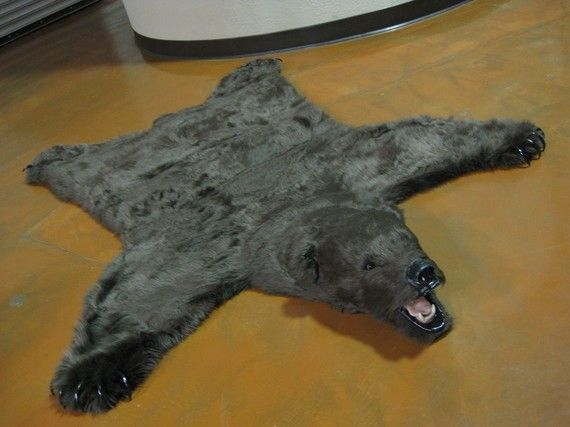 Amazing Best 25+ Bear Skin Rug Ideas On Pinterest | Bear Rug, Woodland Room And  Woodland Nursery