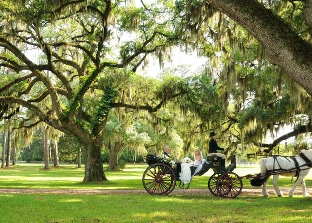 Bride And Groom In A Horse Carriage At The Rose Hill Mansion Bluffton Sc