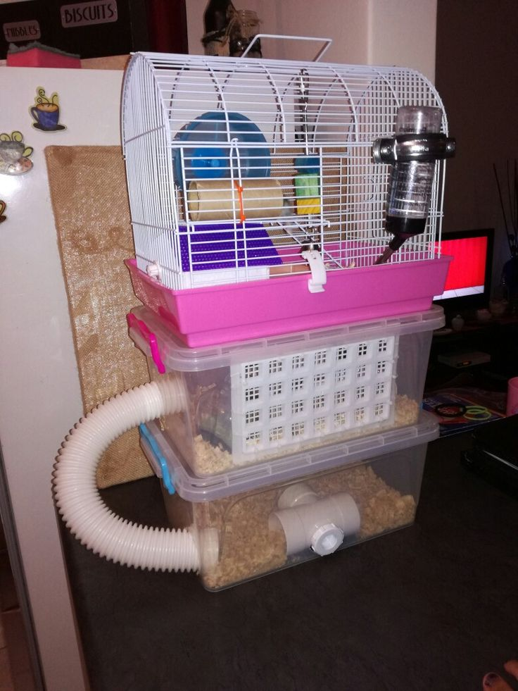 Hamster cage upgrade, 3 stories